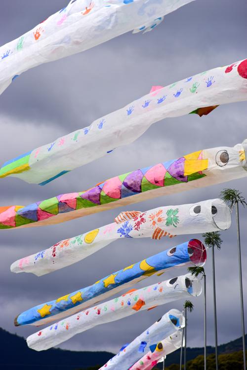 鯉のぼり祭り「真野」