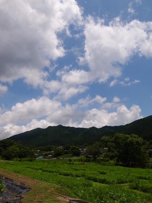 京都大原 6月