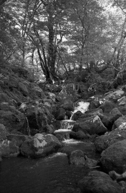 深山幽谷102b