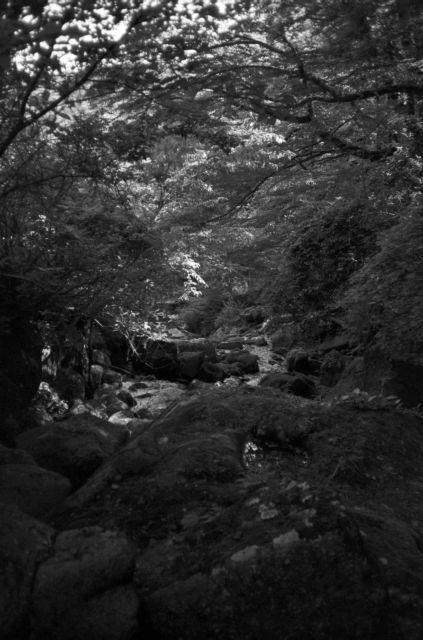 深山幽谷102f