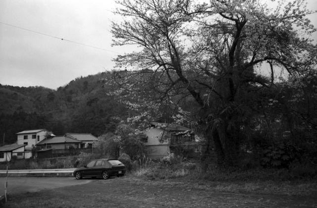 深山幽谷99e