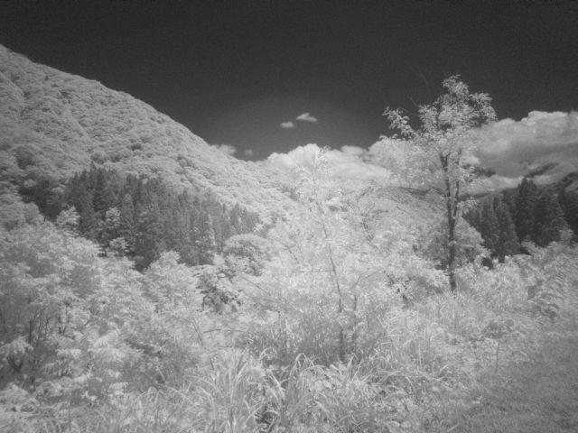 深山幽谷109b