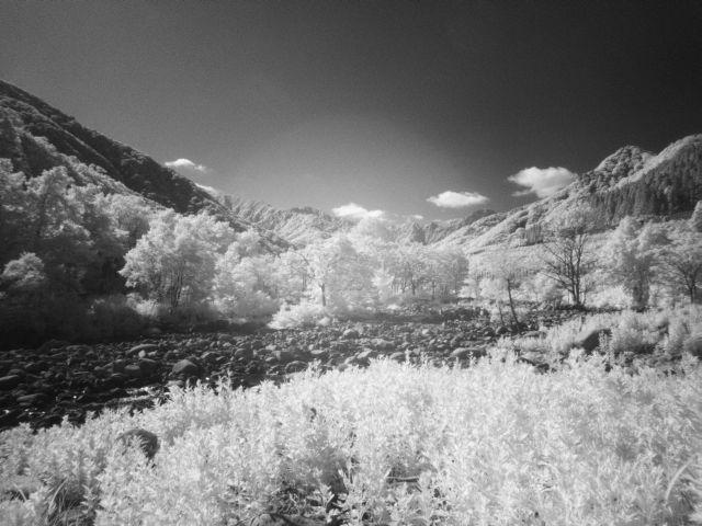 深山幽谷109d