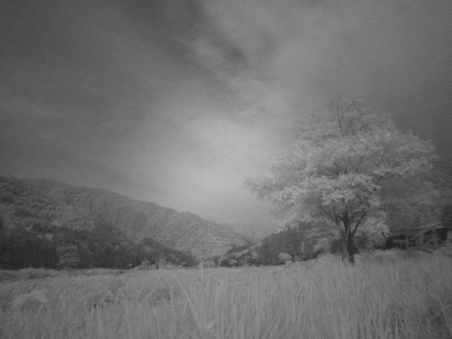 深山幽谷115b