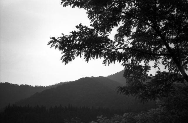 深山幽谷120a