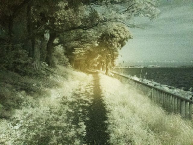 GoStraight-Road22a