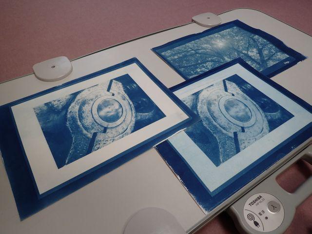 CyanotypePrint03b