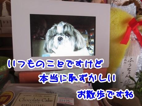0412-10_2016041219252023f.jpg