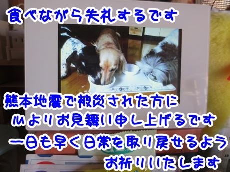 0416-12_20160416154829e4e.jpg