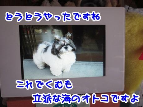 0426-11_201604261943174a2.jpg
