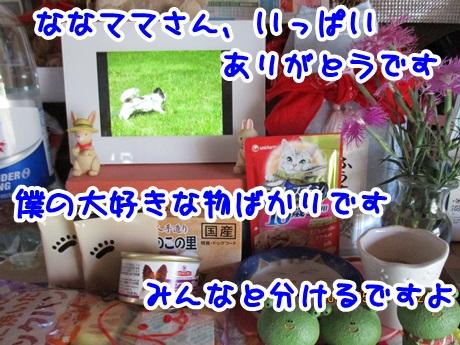0522-09_201605222005548ff.jpg