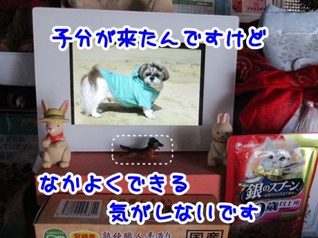 0527-09_201605272009290a3.jpg