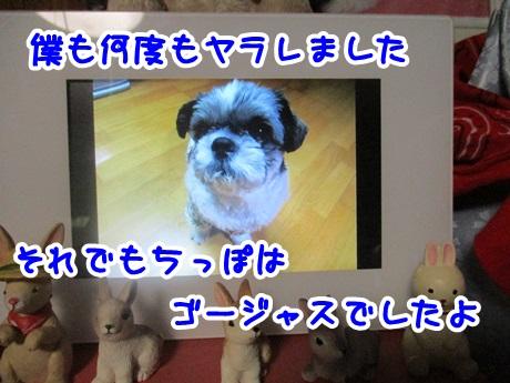 0621-06_201606211952498a4.jpg