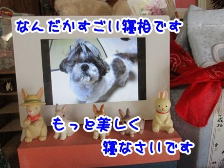 0717-07_20160717195116f7c.jpg