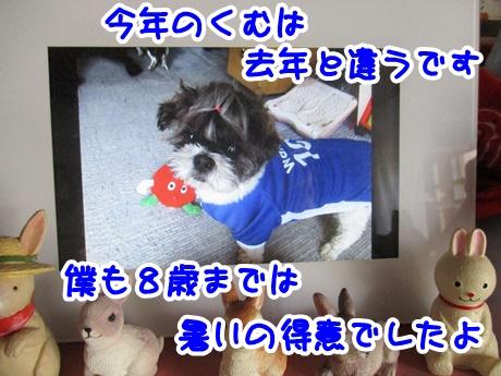 0802-07_20160802192257f9c.jpg
