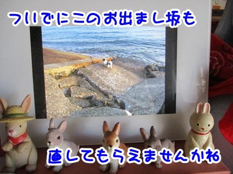 0807-10_20160807200855962.jpg