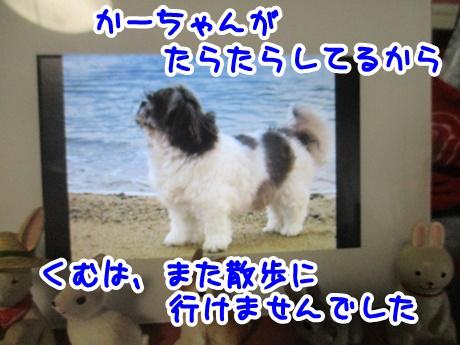 0922-01_201609221913200bf.jpg