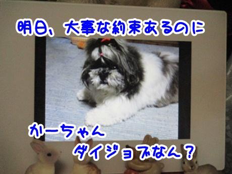 1011-10_201610111716394bd.jpg