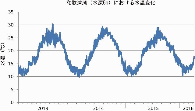 2013-2016和歌浦湾水温変化 (640x365)