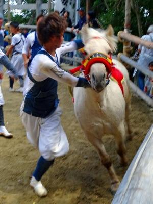 馬にとびのるw
