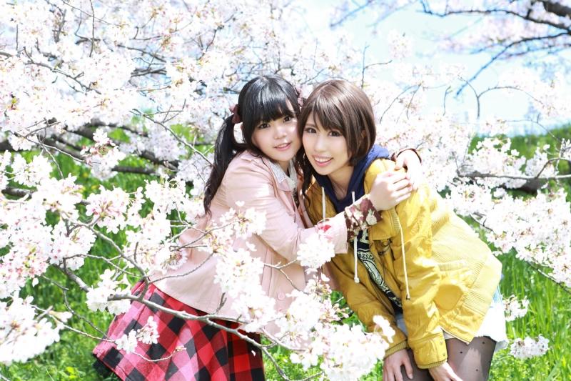 sakura_kagumio4.jpg
