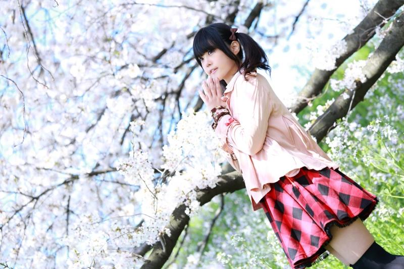 sakura_kagumio8.jpg