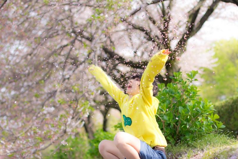 suji_haru3.jpg
