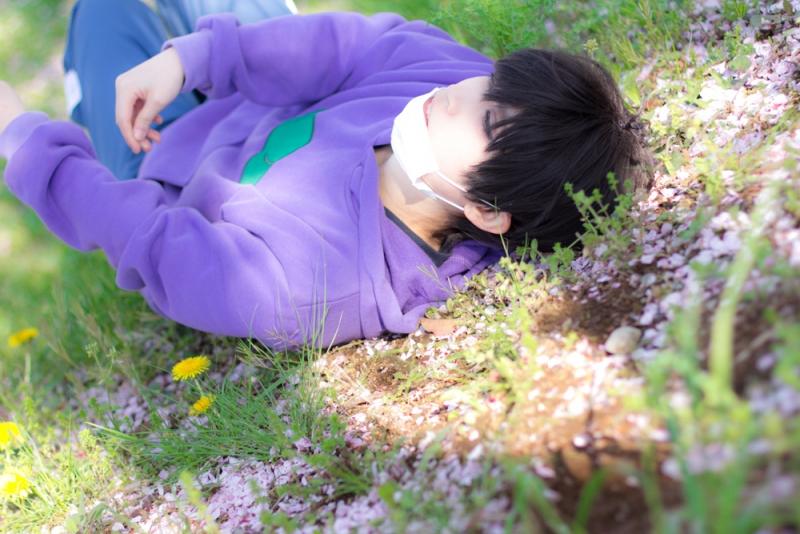 suji_haru4.jpg