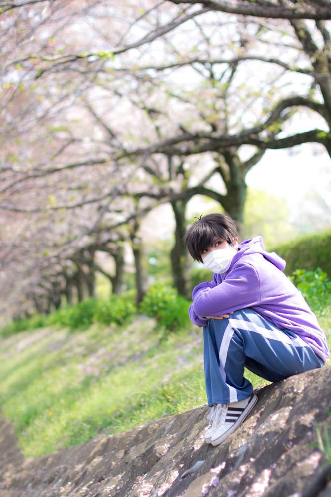 suji_haru6.jpg