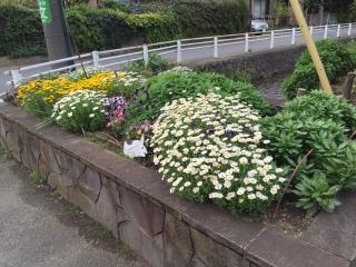 大丸の花壇_06
