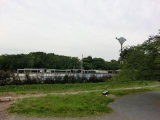 稲田公園プール