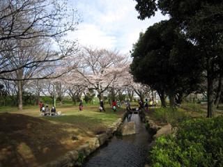 稲田堤公園_稲田公園