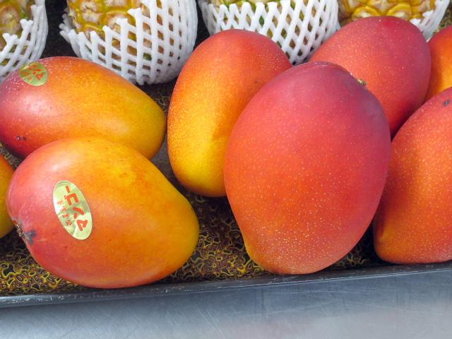 005マンゴー