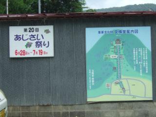 20160624_ajisai-1.jpg