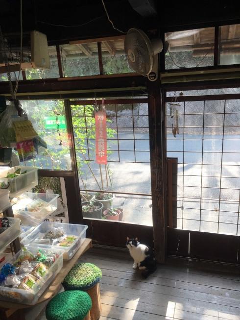 y_blog_photo_016.jpg