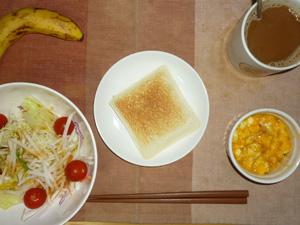 ホットランチパック(ピーナッツバター),サラダ(キャベツ、大根、トマト),フライドオニオン入りスクランブルエッグ,バナナ,コーヒー