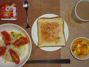 イチゴジャムトースト,サラダ(キャベツ、大根、レタス、トマト)おろし醤油・オリーブオイル,フライドオニオン入りスクランブルエッグ,ヨーグルト