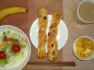 レーズンスティック,サラダ(キャベツ、大根、レタス、トマト)おろし醤油・オリーブオイル,フライドオニオン入りスクランブルエッグ,バナナ,コーヒー