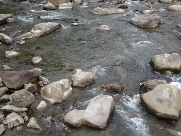 201607291413キャンプ場川底