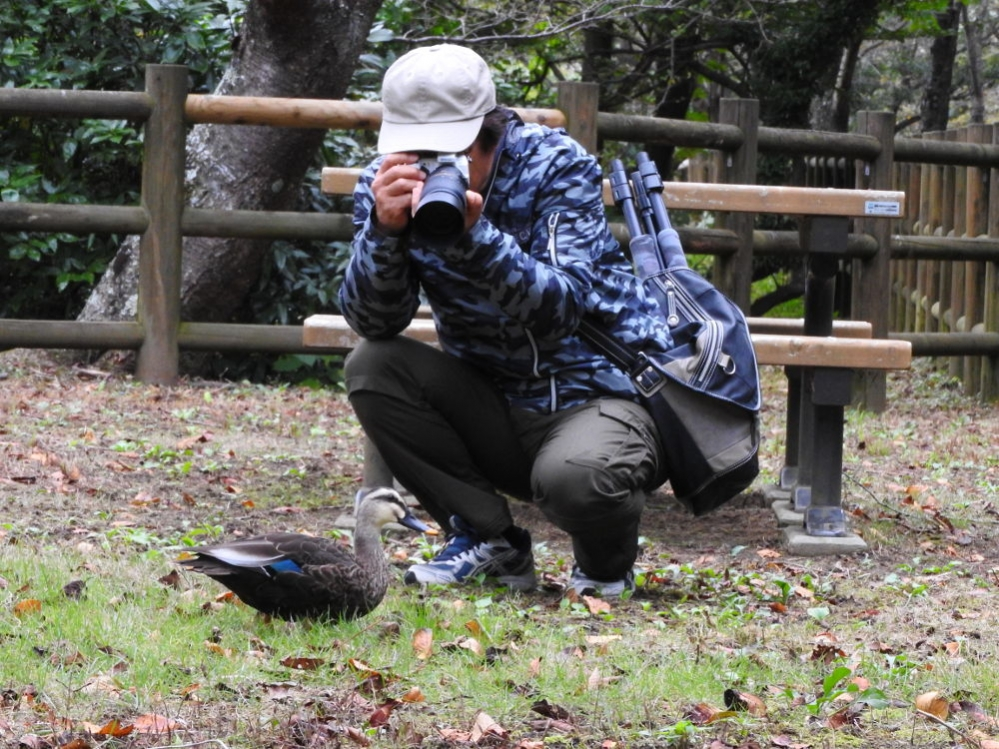 kamo5_20161021.jpg