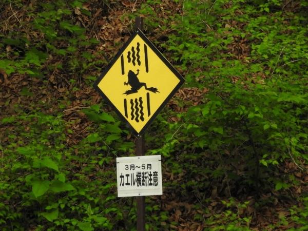 karu_yacyo1_20160523.jpg