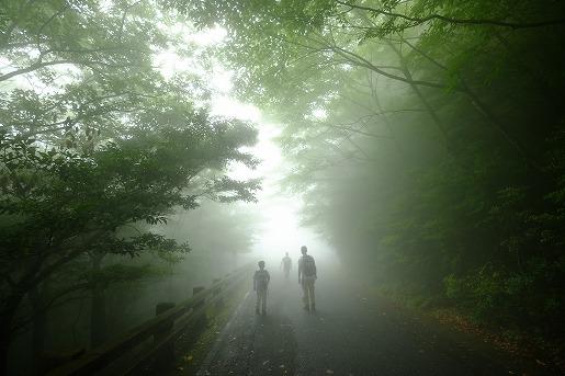 6月25日 白谷雲水峡