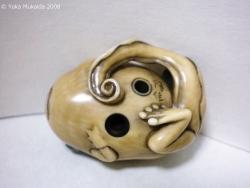 © 陽佳 2008「お玉蛙」DH000018.jpg