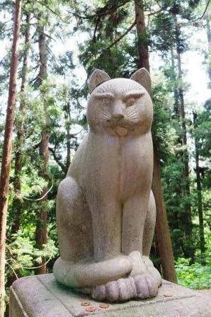 南部社狛猫160606
