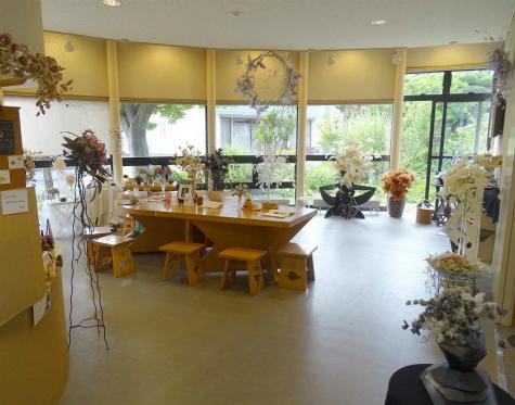ブログ鳴海要記念館の陽子の花