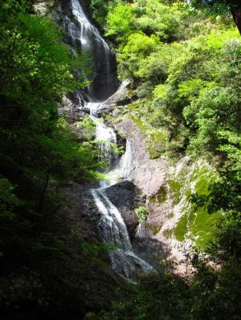 4508七種の滝と息子160429.jpg