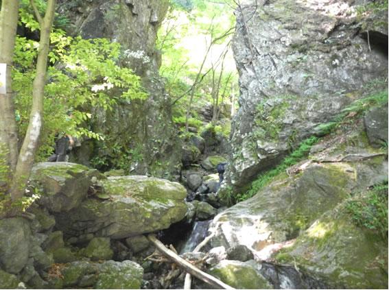 2016.5.22 JOYトレイル「棒ノ折山」に行ってきました♪ by T.M ...