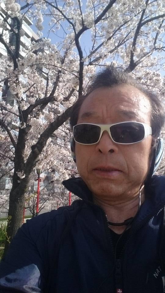 【桜が満開のやすらぎ堤を一時間ジョギング】-1