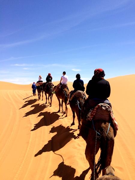 サハラ砂漠IMG_0288