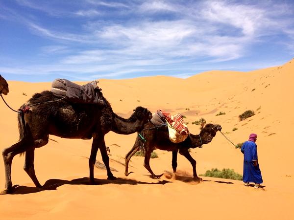 サハラ砂漠IMG_0300